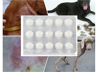 60 tabs Praziquantel Drontal analogue Dog and Cat Wormer Dewormer