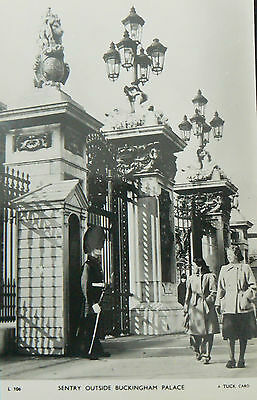 Topographical Postcard.sentry Outside Buckingham Palace.rp 1950's Tuck's Card