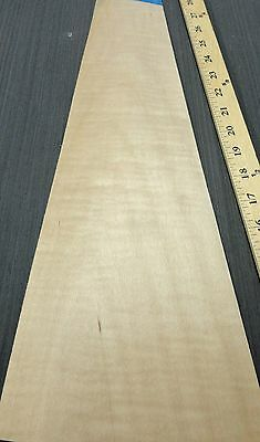 """Maple Curly Figured wood veneer 5"""" x 19"""" raw with no backing """"A"""" grade 1/42"""""""