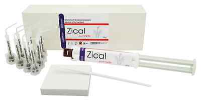 Automix ZOE Antimicrobial Radiopaque Permanent Root Canal Sealant Cement, 10g