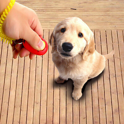 5/3X Dog Pet Puppy Cat Training Clicker Click Button Trainer Obedience Aid Wrist