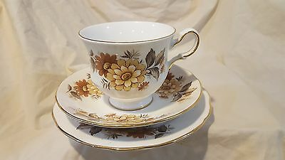 Queen Anne gold footed Bone china Pale brown/yellow floral plate cup and saucer