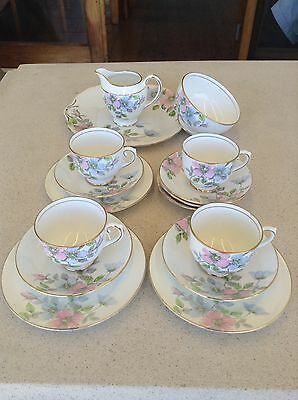 Vintage Salisbury 'Wild Rose' Bone China Tea Set