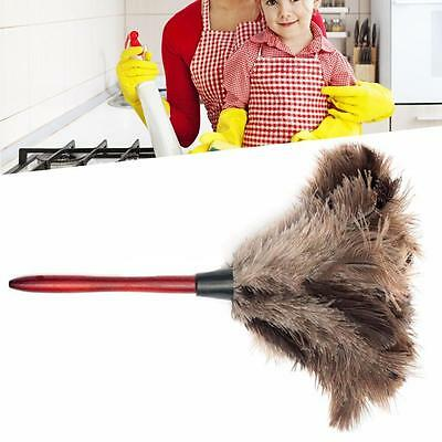 35CM Ostrich Feather Duster Brush Anti-static Long Wooden Handle Home SPd