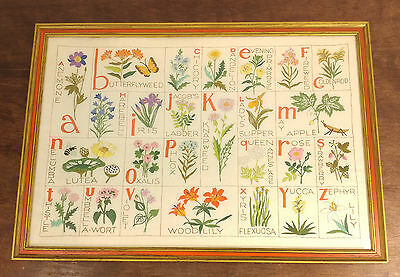 Vtg. Mid Century Hand Sewn Embroidered Stitched Alphabet Flowers Framed Picture