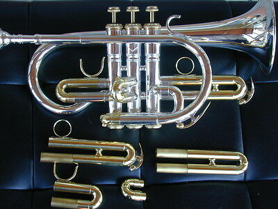 Berkeley Bb C British Large Bell Cornet (2 set tuning Pipe)