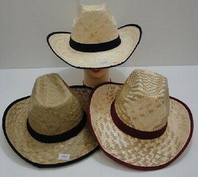 3 Brand New Adult Size Straw Cowboy Hats Wholesale ,  Free Shipping !
