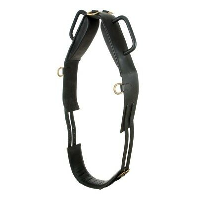 NEW Performers 1st Choice Entry Level Vaulting Surcingle Padded Horse Size Black