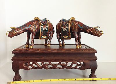 Pair Republic Chinese Cloisonne Saddled Ox Oxen Statues Figures  ~Elegant Stand