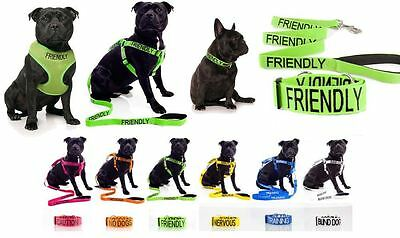 Warning Colour Coded Dog Collars Harness Lead Leash Collar