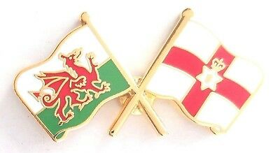 Northern Ireland Flag & Wales Flag Friendship Pin Badge - K98