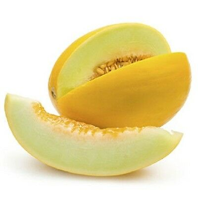 Sweet & Delicious*HONEYDEW*Melon*10-Finest Seeds*hardy Variety*UK Seller*