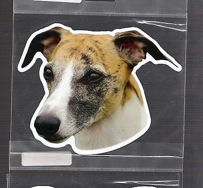 Whippet 4 inch face magnet for car or anything metal     New