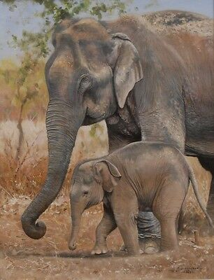 Pip McGarry Original Oil On Canvas Mother & Baby Elephant Signed Dated 2007