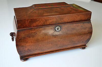 Original antique flame mahogany Regency tea caddy box glass mixing bowl canister