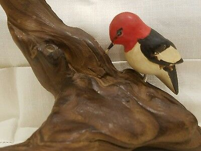 """Hand carved/Painted Wood """"Red Headed Woodpecker"""" Sculpture-Driftwood Base"""