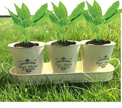 Set Of 3 Vintage Flower Pots With Tray Garden Decoration Ornament Herbs Planter