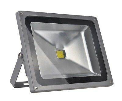 110V Led Reflector Waterproof 50W Cool White