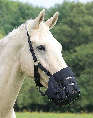 Shires Comfort Grazing Muzzle Baby Blue Pony