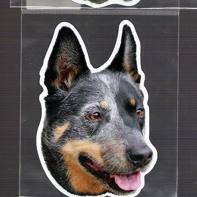 Australian Cattle Dog  4 inch face magnet for anything metal