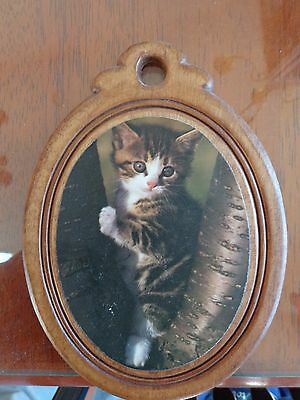 Cat Picture on Wood Frame and Back - Cute