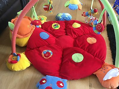 Mamas And Papas Ladybird Play Gym Excellent Condition