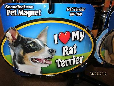I Love My Rat Terrier 6 inch oval magnet for car or anything metal  New