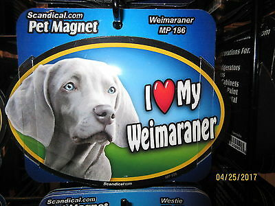 I Love My Weimaraner 6 inch oval magnet for car or anything metal  New