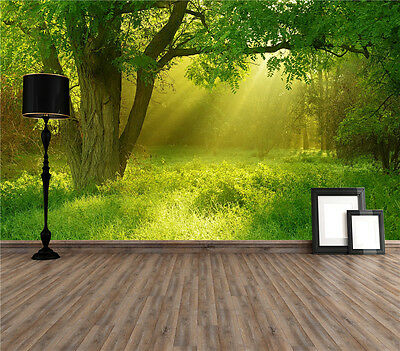 Forest Sunshine Photo Wallpaper Mural Giant Wall Covering Decor Pre-pasted 1300