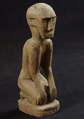 Ancestor figure - Atoni - West Timor - hardwood - tribal artifact