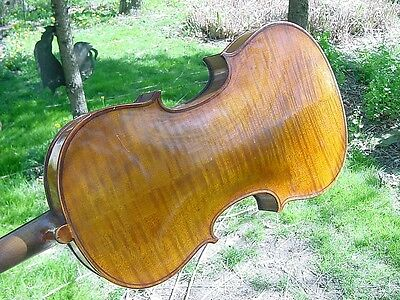 ANTIQUE G A PFRETZSCHNER VIOLIN 2 BOWS CASE 1920S  4/4 Stradivarius 1716 copy