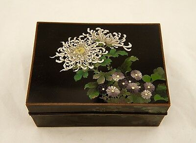 Hayashi type Meiji Japanese Cloisonne wired enamel Chrysanthemum floral box