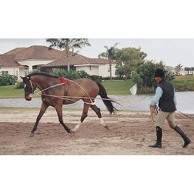 Pessoa Lunging System None Pony