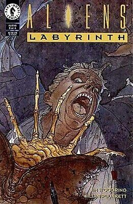 "Comic Dark Horse ""Aliens: Labyrinth'' #3 1993 NM"
