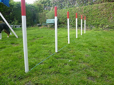 6 DOG AGILITY WEAVE POLES Training obedience+fun keep fit + rope spacer