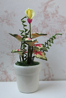 Dolls house miniatures: potted houseplant with bud