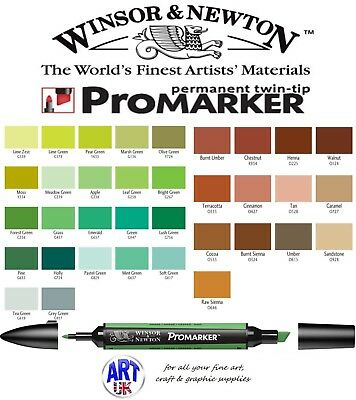 Winsor & Newton PROMARKER Pen Brown & Green Colour Drawing Art Student Letraset