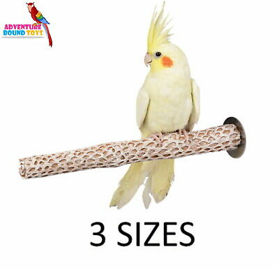 Adventure Bound Cactus Stone Bird Parrot Cage Nail Trimming Perch 3 Sizes