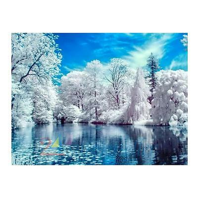 5D Snow Lake Diamond DIY Embroidery Painting Cross Stitch Home Wall Decoration