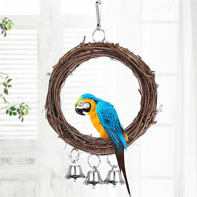 Pet Bird Parrot Swing Cage Toy Chew Bites for Parakeet Cockatiel Cockatoo Conure
