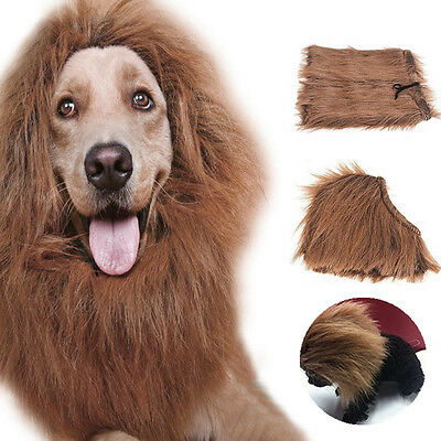Pet Costume Cat Clothes Fancy Dress Up Lion Mane Wig for Cats Small Large Dogs