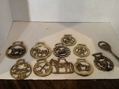 Lot Of 11 Vintage English Brass Equestrian Horse Harness Bridle Medallions