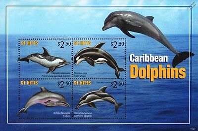 DOLPHINS of the Caribbean Marine Life Stamp Sheet (2010 St Kitts)