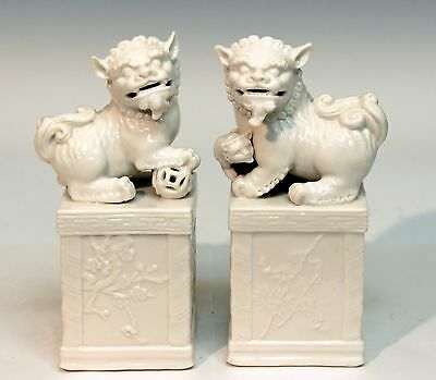 Pair Chinese Japanese Porcelain Foo Lion Dogs Blanc de Chine Temple Shrine