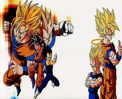 Dragon Ball Z 8x10 Photo, Featuring Goku And Vegeta. DBZ, Gohan Super Saiyan