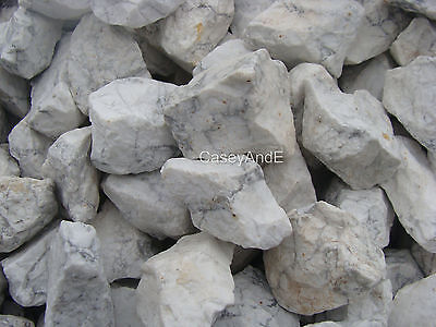 WHITE HOWLITE ROUGH ROCKS - 2 1/2 LB Lot - TUMBLER CABBING ROUGH - FREE SHIPPING