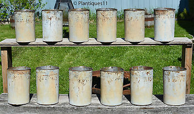 12 - LOT Old Vintage Canadian Quebec CREAM WHITE beige maple syrup SAP BUCKETS