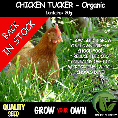Chicken Tucker - 20 grams -SAVE $$$ Grow your own 'GREEN' Chicken Food (ORGANIC)