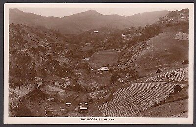 Postcard St Helena Island early view of The Ridges RP