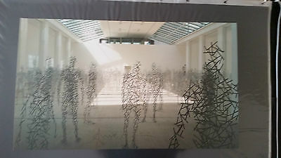 Anthony Gormley - Domain Field - Signed LTD ED of 250
